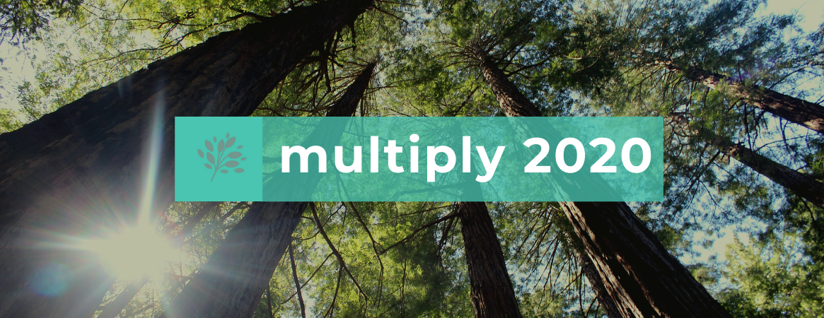 multiply 2020 web banner FINAL